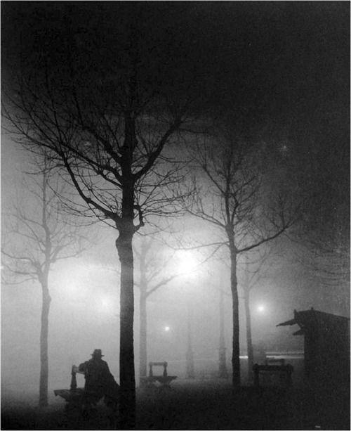ee0e33b8232ada11ef9d1805349efa1f--night-photography-art-photography