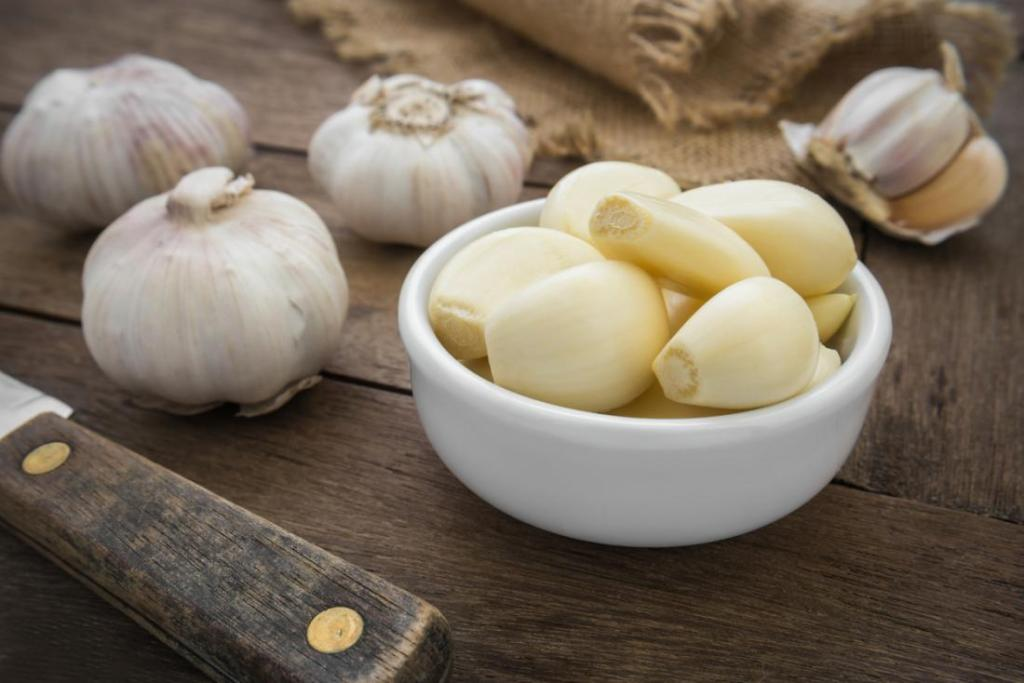 the properties of garlic