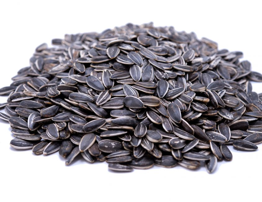 the properties of sunflower seeds